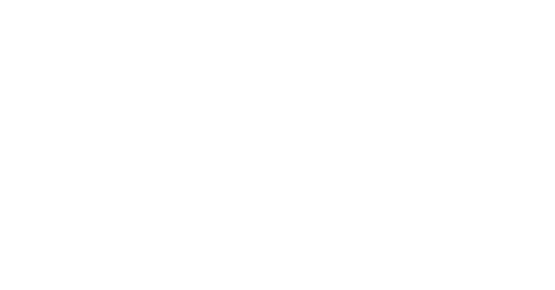Ana Leon - Abogado